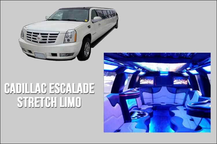 Limo and Party Bus Fleet - Stretch Limo