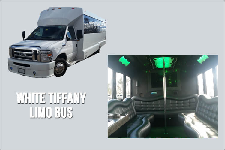 Limo and Party Bus Fleet - Limo Bus